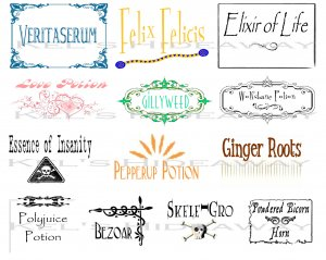 13 Wizard Theme Party POTION Labels Stickers