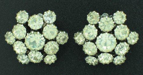 Clear Prong Set Rhinestone Cluster Earrings Ear2049