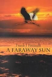 A Faraway Sun by Frank J. Pettinelli (2002, Hardcover)