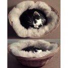 Painted stone sleeping cat in basket