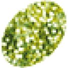 Ranger - Stickles - Lime Green