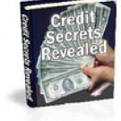 Secrets of Credit Revealed eBook