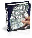 Secrets of Credit Revealed eBook