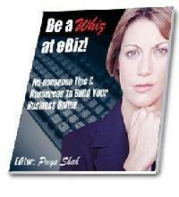 Be a Whiz at eBiz eBook