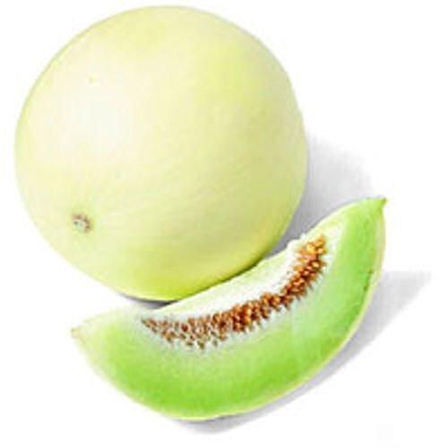 Honeydew MELON rich in vitamin C 15 seeds