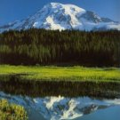 Mount Rainier: The Story Behind the Scenery