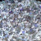 50 pieces natural opals from Sri Lanka in Marquise cut.FREE shipping.