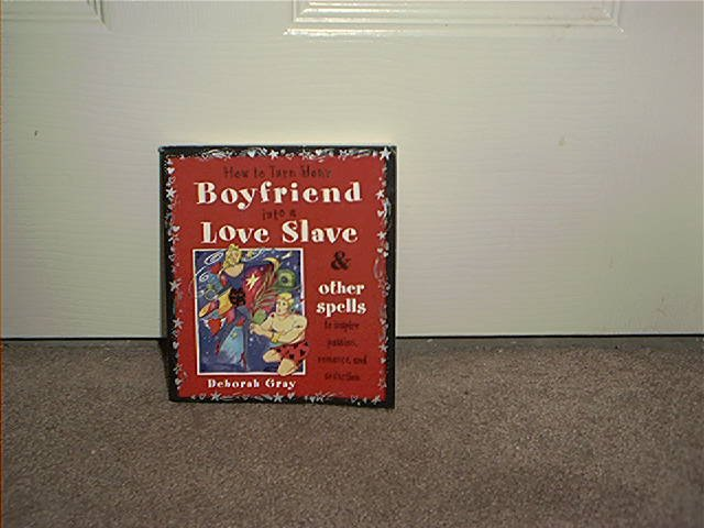 HOW TO TURN YOUR BOYFRIEND INTO A LOVE SLAVE BOOK BRAND NEW