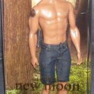 Barbie Collector Edition TWILIGHT New Moon JACOB BLACK Doll NEW!