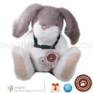 Retired Boyds Bears Rabbit BENSON T. HOPABOUT Boyd Bunny Collector Plush Style # 916503 New w/ Tags