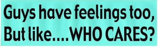 Guys have feelings too, But like WHO CARES? Bumper Sticker