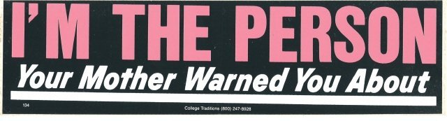I'M THE PERSON Your Mother Warned You About Bumper Sticker