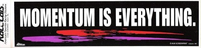 MOMENTUM IS EVERYTHING. Bumper Sticker