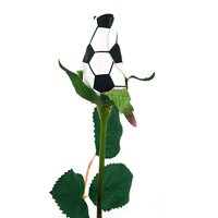"SPORTS ROSES - ""SOCCER ROSE"" Made from an actual Soccer ball!"