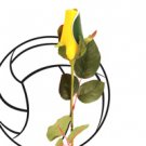 "SPORTS ROSES - ""VOLLEY BALL ROSE"" Made from an actual Volley ball!"