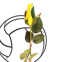 """SPORTS ROSES - """"VOLLEY BALL ROSE"""" Made from an actual Volley ball!"""