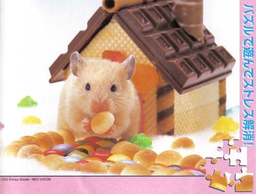 Nicole the gingerbread hamster (108 Pieces)