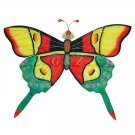 TCHD001-8  Rain Forest Butterfly Kite-1 (Red/Green) (Chinese Silk Kite)