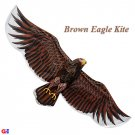 Extra Large Silk Eagle Kite - Dark Brown - Chinese Silk Kites