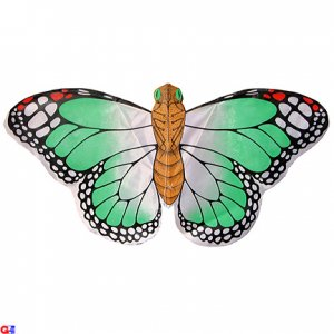 2 Rayon Green Butterfly Kites For Kids