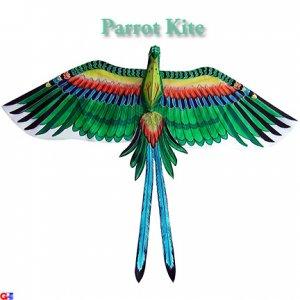3D Silk Parrot Kite - Green