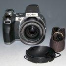 Sony Cyber-shot DSC-H1 5.0MP Digital Camera - Silver #8134