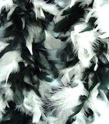 Black And White Feather BOA