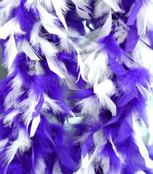 Purple and White Feather BOA