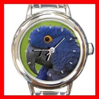 Hyacinth Macaw Bird Italian Charm Wrist Watch 046