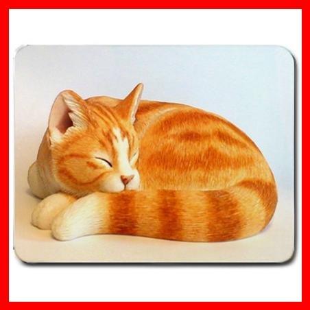 Ginger Cat Sleeping Pet Fun Mouse Pad MousePad Mat 036