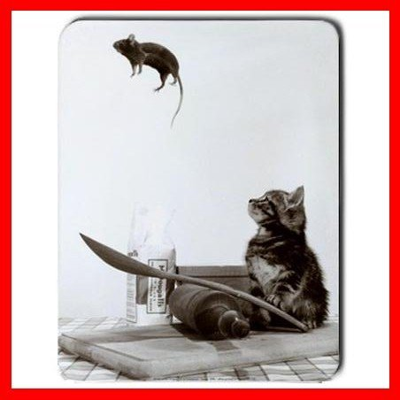 Cat And Mouse Play Animal Mouse Pad MousePad Mat 042