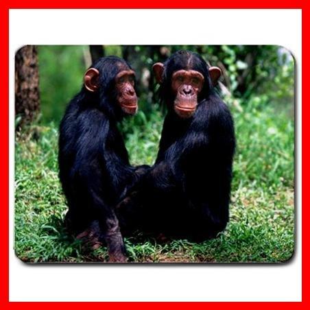 Chimpanzee Ape Animal Hobby Mouse Pad MousePad Mat 061
