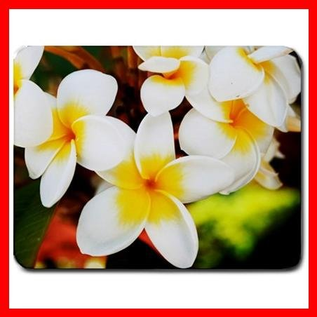Frangipani Flowers Plant Mouse Pad MousePad Mat 093