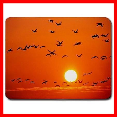 Orange Birds Rosing Sunset Fly Mouse Pad MousePad Mat 107