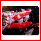 Aquarium Fish Mouse Pad MousePad Mat 127