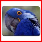 Amazon Parrot Bird Mouse Pad MousePad Mat 129