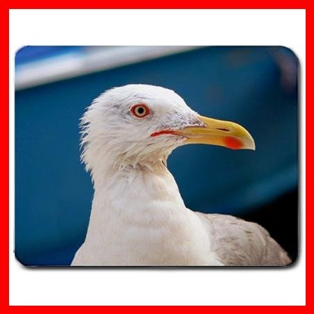 Herring Gull Bird Animal Fun Mouse Pad MousePad Mat 136