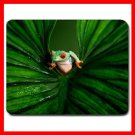Red Eyed Tree Frog Animal Mouse Pad MousePad Mat 147