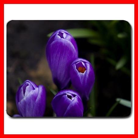 Purple Crocus Flowers Mouse Pad MousePad Mat 151