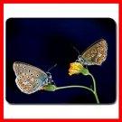Lemon Pansy Butterflys Fly Mouse Pad MousePad Mat 160