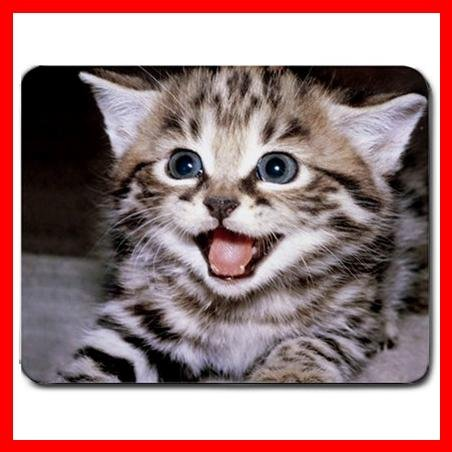 Khout Kitten Cat Pet Animal Mouse Pad MousePad Mat 164