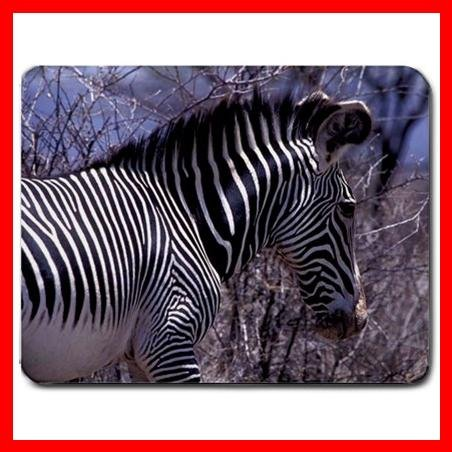 Zebra Wildlife Animal Hobby Mouse Pad MousePad Mat 165