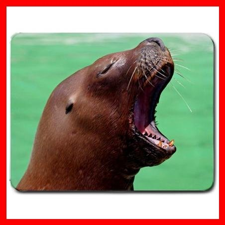 Sea Lion Yawn Wild Animal Mouse Pad MousePad Mat 178