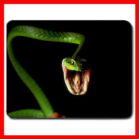 Snake Reptiles Animal Hobby Mouse Pad MousePad Mat 181