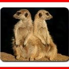 MEERKATS Wildlife Animal Mouse Mouse Pad MousePad Mat 194