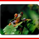 Frog Red Eye Animal Hobby Mouse Mouse Pad MousePad Mat 198