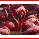 Pink Flamingo Wildlife Bird Mouse Mouse Pad MousePad Mat 205