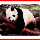 Sleeping Panda Cute Animal Mouse Mouse Pad MousePad Mat 206
