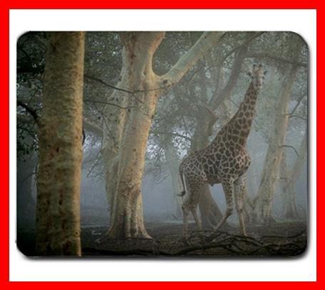 Giraffe in Mist Animal Hobby Fun Mouse Pad MousePad Mat 226