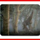 Giraffe in Mist Animal Hobby Fun Mouse Pad MousePad Mat 226